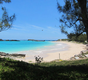 Coopers Island